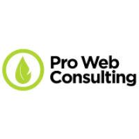 Pro web consulting SA